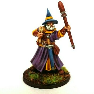 (Wizard Miniature, Painted, RPG/D&D/Frostgrave/Fantasy/wargames/skirmish • 15£