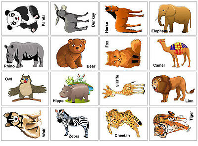 Animals Flash Cards Set Educational Early Learning Picture Word Zoo SEN 32 Cards • 3.99£