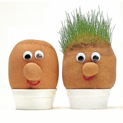 Mr Grass Head Grow Your Own Grass Kit Kids Boys Girls Educational Toy Gift • 6.99£