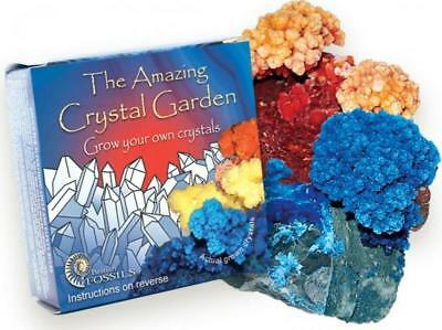 Amazing Crystal Garden Grow Your Own Crystals Educational Scientific Kit Xmas • 3.25£