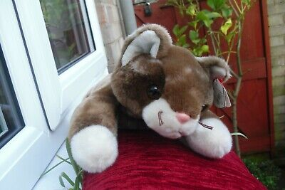 LOVELY TY Buddy  Pounce     Immaculate 2001 • 28£