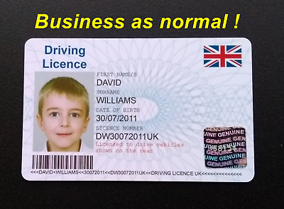 Novelty Personalised Kids Childrens Driving Licence Ideal Gift Idea • 5.99£