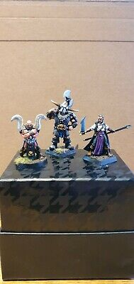 Hand Painted D&D/RPG Miniatures - Barbarian, Druid & Elven Mage.  • 7£
