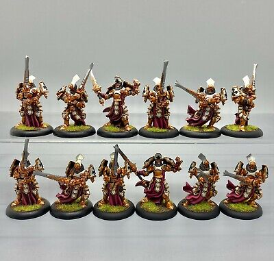 Warmachine Hordes Protectorate Of Menoth Knights Exemplar Painted Unit • 69.95£