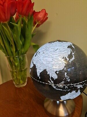 Light Up Globe  • 12.99£