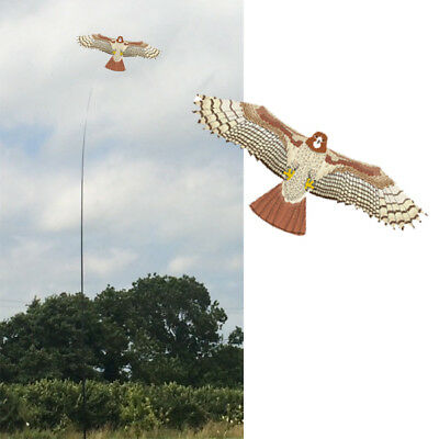 Hawk Kite Kits. Pattern Bird Scarer Protect Farmers Crops. With A Free Line  • 16.99£