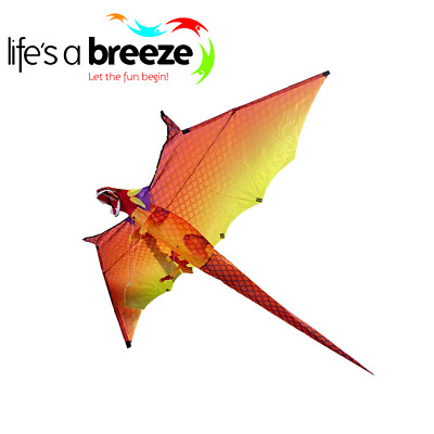 Fire Dragon Life's A Breeze 3D Colourful  Dragon.Windsock Kite,Festival Kite. • 25.99£