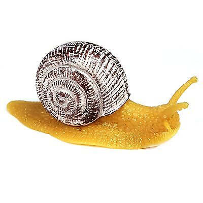 Sticky Snail Toy With Hard Shell - Ideal For Jokes And Pranks  • 8.99£