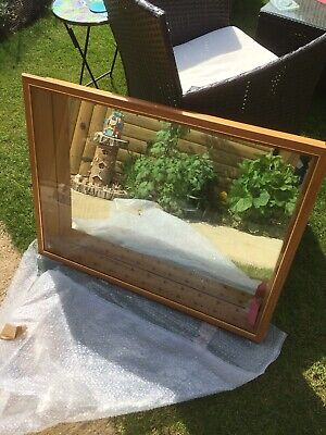 Model Display Case • 55£