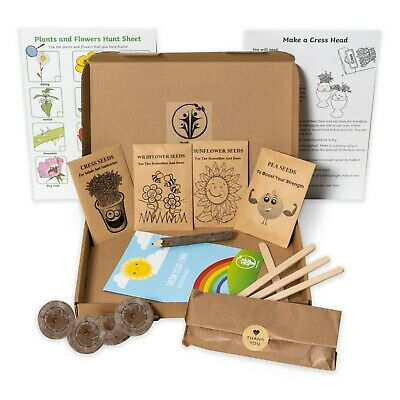 Grow Your Own Kit Kids Activity Set Art And Craft  By HEALTHY FAMILY • 6.50£