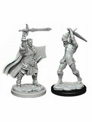 Dungeons & Dragons Nolzur's Marvelous Miniatures Human Male Paladin WZK90060 • 5.49£