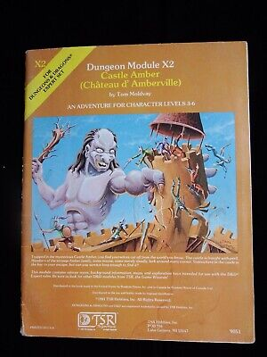 TSR D&D Castle Amber X2 9051 Vintage 1981 Good Condition Dungeons And Dragons • 8£