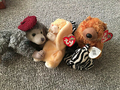 Ty Vintage Beanies Babies Bundle, Soft Toys Cheri, Grace, Ziggy And Sequoia • 12£