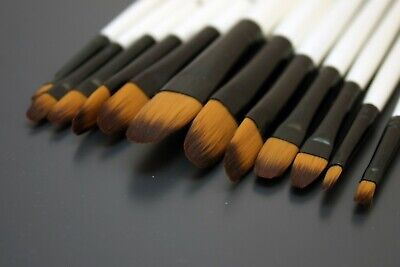 Artist Paint Brush Set 12pc Filbert Flat • 5.19£
