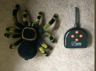 Natural History Museum Remote Control RC Large Size 10 Inch Spider Tarantula • 3.20£
