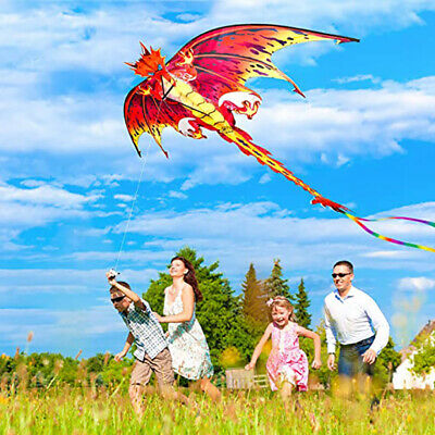 Dragon Kite 3D Pterosaur Single Line With Tail Outdoor Sports Adults Kids Toy PE • 13.27£