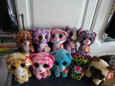 10 X Ty Beanie Boos Cat Bundle (all With Tags) • 16.50£