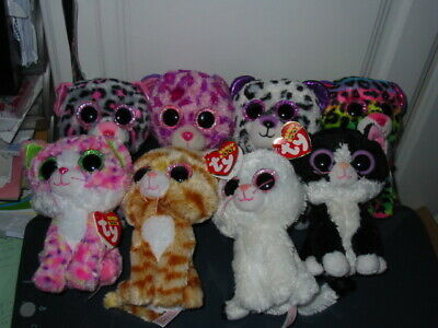 8 X Ty Beanie Boos Cat Bundle (all With Tags) • 13.20£