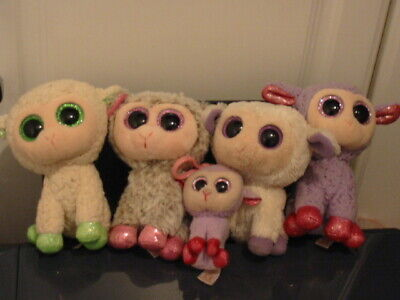5 X Ty Beanie Boos Lamb/sheep Bundle • 8£