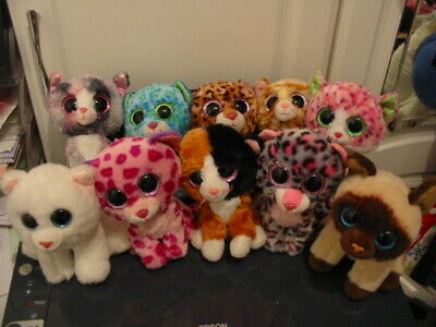 10 X Ty Beanie Boos Cat Bundle • 17£
