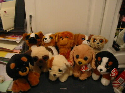 10 X Ty Beanie Boos Dog Bundle - Gold • 17£