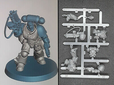 Primaris Space Marine Lieutenant With Auto Bolt Rifle • 13.25£