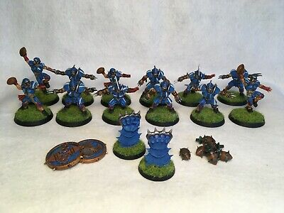 Reikland Reavers - Human Blood Bowl Team Warhammer Pro Painted • 55£
