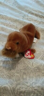 TY Beanie Babies - Paul The Walrus - Retired Original- Mint With Tags- Rare • 1.40£