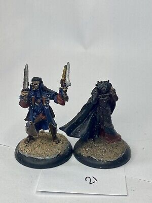 Warmachine Solo Lady Aiyana And Master Holt • 4.50£