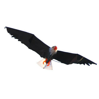 Outdoor Fun Kids Eagle Shape Kites Windsock With String Park Toy Gift • 23.32£
