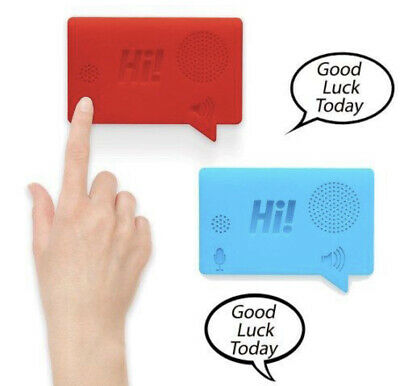 The Little Voice Recorder - Magnetic Message Recorder • 3.50£