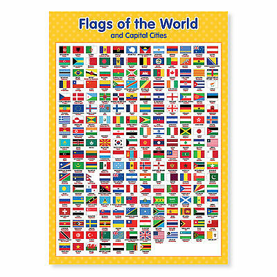 A3 Laminated Flags Of The World Poster Wall Chart • 3.50£