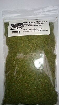 Static Grass 2mm Bulk Bag 50g - Meadow Green - Grass Flock First Class P&P • 5.99£