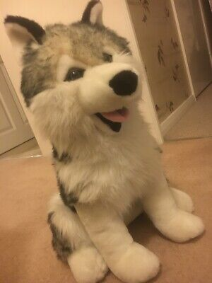 LARGE SOFT TOY HUSKY DOG  50 Cms High.  Genuine Finnish Manufacture. Gorgeous! • 24.99£
