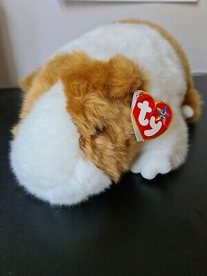 Ty Original Beanie Buddies Large Twitch Collectable Guinea Pig • 30£
