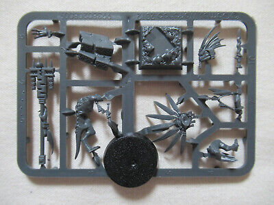 Lizardmen/Seraphon Skink Starpriest *Age Of Sigmar/Warhammer* Games Workshop • 11.75£