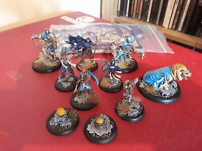 Guild Ball Order Of Solthecius Oop Painted • 150£