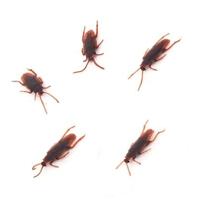 5 X Joke Cockroach Bug Funny Prank Novelty Life Like Fake Plastic Toy Trick NEW • 2.49£