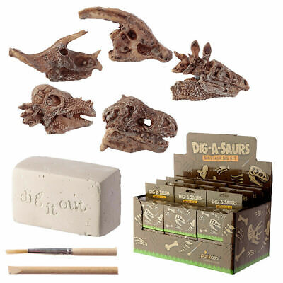 Educational Toy Dinosaur Fossil Excavation Dig It Out Kit - Indoor Activity   • 5.49£