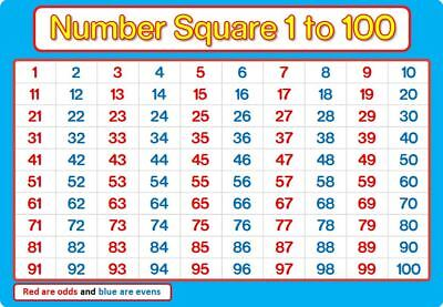 A4 NUMBER SQUARE 1-100 Laminated BLUE And PINK Maths Chart Poster Education • 2.29£