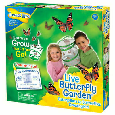 Insect Lore Live Butterfly Garden Hatching Kit Indoor & Outdoor • 19.99£