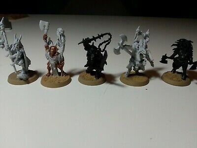 5 Beasts Of Chaos Heroes, Warhammer Age Of Sigmar - Beastlords And Bray Shamans • 20£
