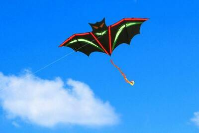 Colorful Cartoon Bat Kite For Kids And Adults Outdoor Fun Sport Activity • 20.29£