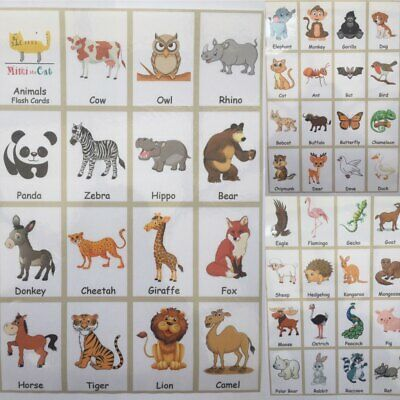 47 Animals Flash Cards Set Word Fun Card Pack Educational Learning Picture Kids • 9.99£