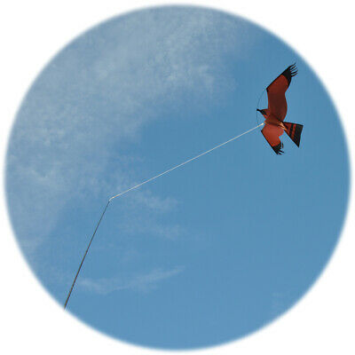 Kite Pole Tether For Bird Kites - This Tether Prevents Tangles • 8.01£