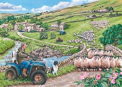 House Of Puzzles Big 500 Piece Jigsaw Puzzle - Finavon Collection - Round Up • 15.99£