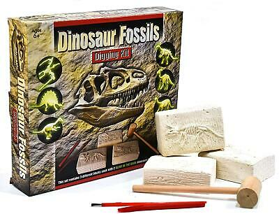 Dinosaur Fossils Digging Excavation Kit Dig Your Own Skeleton Glow In The Dark • 5.99£