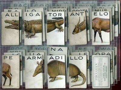 Tobacco Card Set, WD & HO Wills, ANIMALLOYS, Animal Sectional Puzzles, 1934 • 0.01£