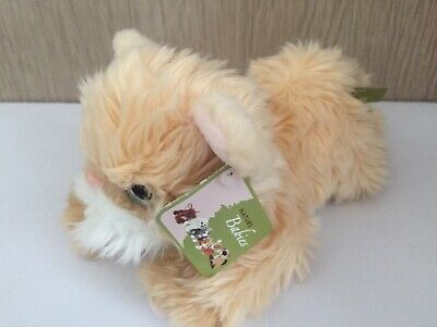 """NEW Nature Babies Orange Persian 9"""" Nose To Tail Soft Toy Plush Collectable Gift • 7.50£"""