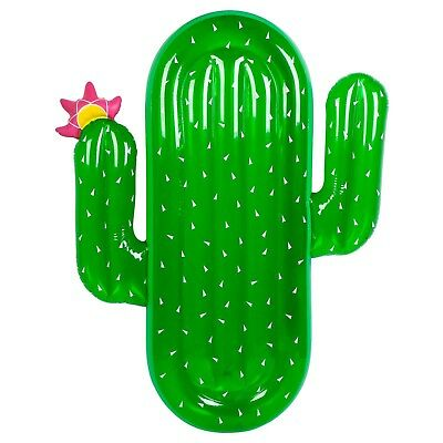 Inflatable Green Cactus Float Lilo • 12£